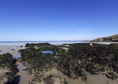 Pêche à pied Kervelplage grande marée